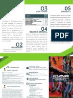 Diplomado Gestion Publica PROFE WEB (1)