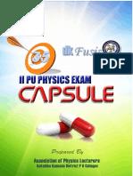 II Physics Capsule