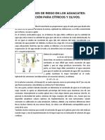 NECESIDADES HIDRICAS DE LOS  AGUACATE, APLICACION PARA  CITRICOS Y OLIVOS
