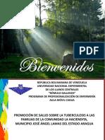Presentacion Andreina-Paola Tb