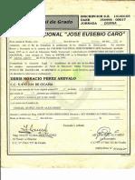 PDF A COLOR_1_20190809151619238