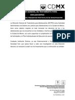 LINEAMIENTOS PARA INVESTIGACIONES.pdf