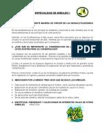EN - ESPECIALIDAD DE ARBOLES.doc