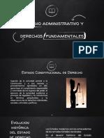 Derecho Administrativo y Derechos Fundamentales.