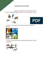 Resumen Animales Vertebrados e Invertebraos