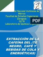 Cafeína+(...pptx