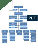 Organigrama Institucional RNPN 2019