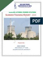 NAPS REPORT.pdf