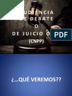Audiencia Juicio Oral.pptx