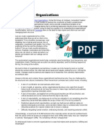 Reinventing Organizations Complete Summary v6