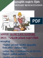 sinhala ppt CPR