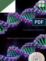 Aberracoes Cromossomicas.pptx