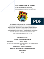 Modelo de un informe pre profesional UNAP