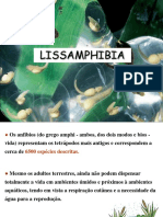 Lissamphibia-2011b-