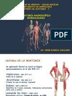 Generalidades anatómicas