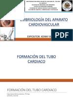 Embriología Del Aparato Cardiovascular