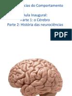 Aula1 Evolucao Do Cerebro 2019