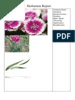 Herbarium Report New