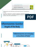 Inflamasoma