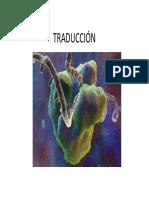 biologia.traduccion molecular.pdf