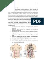 BNO Patologis