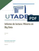 Informe Mineria de Datos