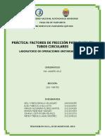 Informe de Practica - Factores de Friccion
