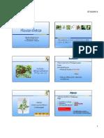 Plantas tóxicas [Modo de compatibilidad]