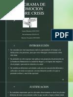 Programa de Promocion Sobre Crisis Presentacion (1)