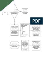 Dcrt1616 e&Pyccos Legalpetrol