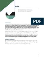 Rapid drawdown.pdf