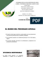 exp avicola.pptx