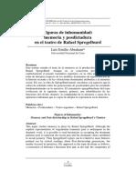 Memoria y Post Dictadura Rafael Spregelburd