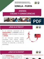 2. ANEMIA CAUSAS Y CONSECUENCIAS.ppt