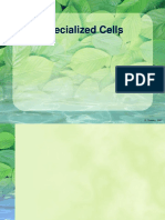 Specialised-Cells.ppt