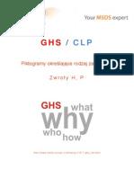 GHS_CLP - Piktogramy określające rodzaj zagrożenia, Zwroty H, P