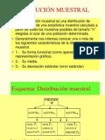 DISTRIBUCION MUESTRAL 2019 [Autoguardado].pptx