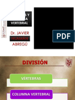 01. Vertebras y Cuello Parietal.pdf