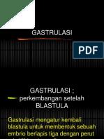 Gastrulasi Part 32