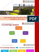 CAIE Curriculum Overview