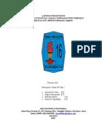 (REVISI) 878210_tugas Pertumbuhan Dan Perkembangan Kel 5 12 Ipa 2