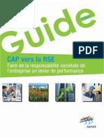 2012 - MEDEF - Guide_Cap_vers_la_RSE.pdf