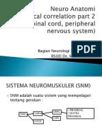 Neuurooaanaatoomii