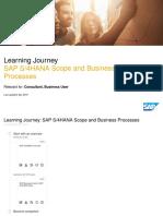 SAP S/4HANA Scope and Business Processes