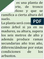 TEXTO ÁRBOL.docx