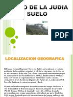 Presentación1 Suelo Ecosistemas