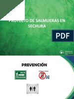 Proyecto de Salmueras en Sechura 2018