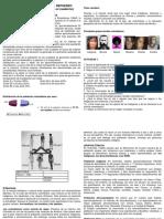 TALLER DE RECUPERACION O REFUERZO 7 (1).docx