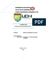 Informe Final Practicas Pre Profesionales Nivel II