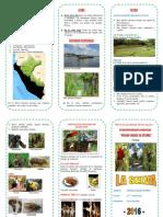 triptico selva peruana